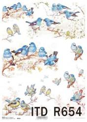 Ryžinis popierius Paukščiai