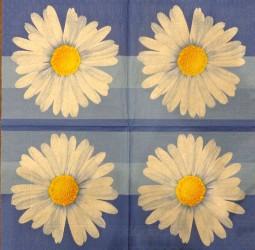 Napkin daisies
