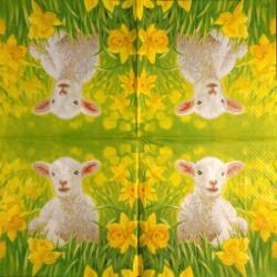 Napkin Sheep