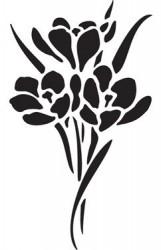 Stencil (D0413)