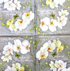 Servetėlė Orchidėjos