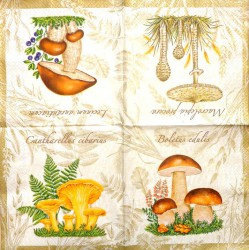 Napkin Mushrooms