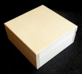 Kvadratinė dėžė (2 dydis)