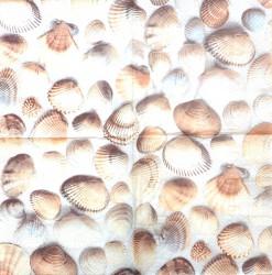 Napkin Shells