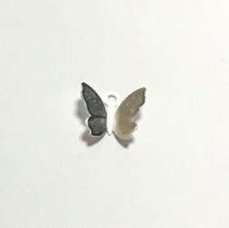 Drugelis (sidabro spalva)