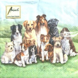Napkins Pedigree dogs