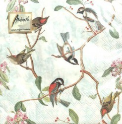 Napkins Birdsong