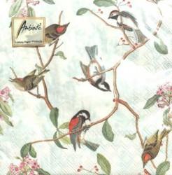 Servetėlių pakelis Paukščiai