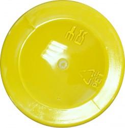 Mat paint Lemon (120 ml)