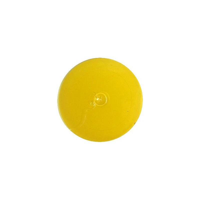 Matiniai dažai – pigmentai AKRILEN Citrininė (60 gr)
