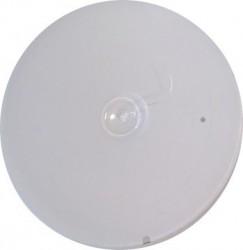 Mat paint White (60 gr)