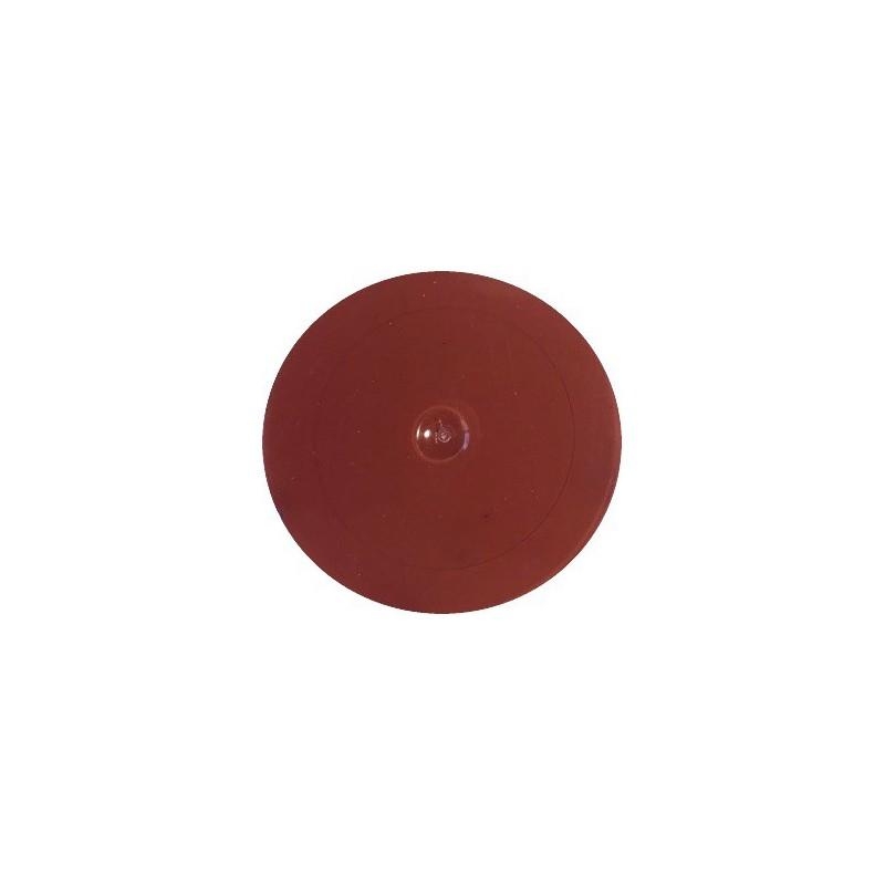 Matiniai dažai – pigmentai AKRILEN Ruda (60 gr)
