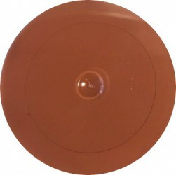 Mat paint Bright brown (60 gr)