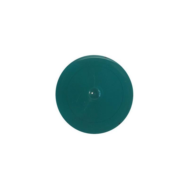 Matiniai dažai – pigmentai AKRILEN Žalia (60 gr)