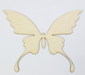 Butterfly big