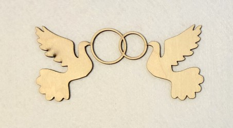 Birds with rings