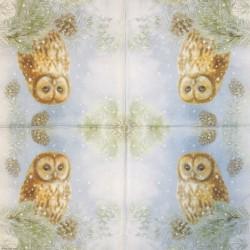 Napkin Owl