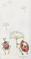Handkerchief Ladybird