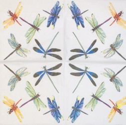 Napkin Dragonfly