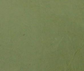 Ryžinis popierius žalias
