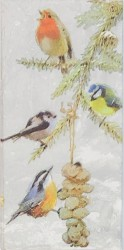 Popierinė nosinaitė Paukščiukai