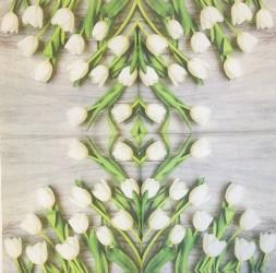 Servetėlė Tulpės