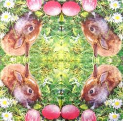 Napkin Rabbit