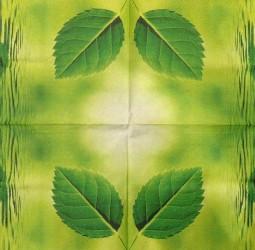 Napkin Leaf